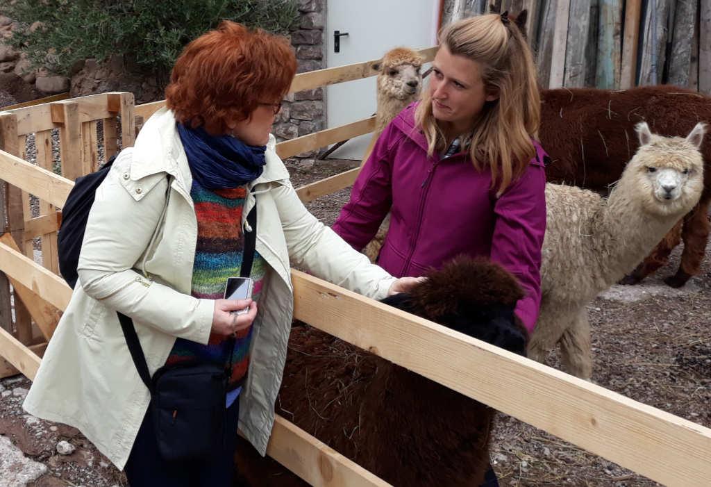 Katrin Walter streichelt das Alpaka Manolo sowie Ilaria Baldo und im Hintergrund Artù. Foto: Mara Lona für Noromaniac