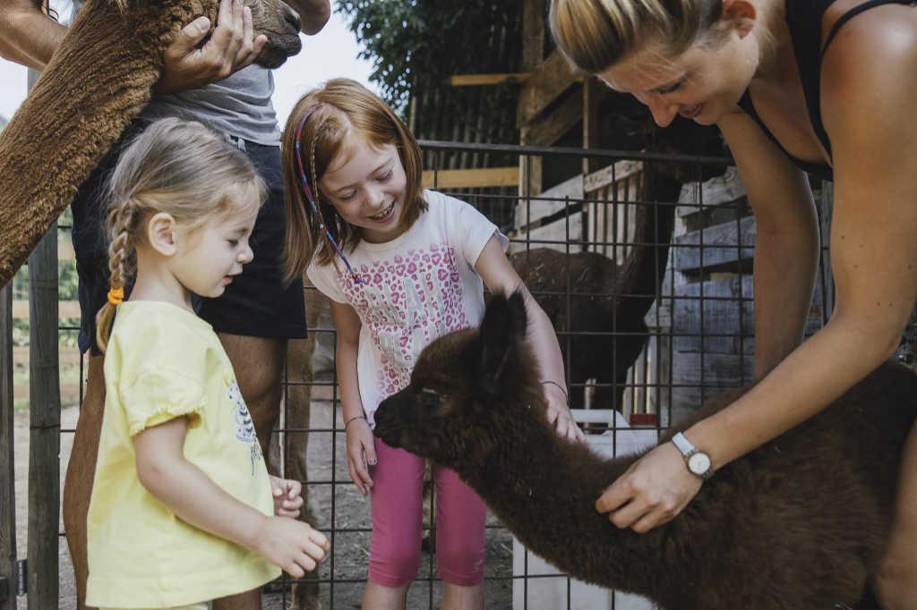 Man sieht Ilaria mit einem Alpaka und zwei Kindern, die sich sichtlich freuen. Foto: Silpaca für Noromaniac, Katrin Walter