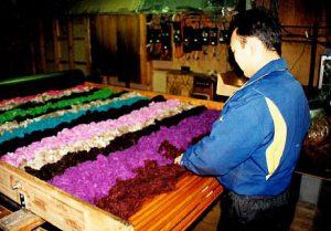In der Produktion in Japan: Mitarbeiter beim Prüfen der gefärbten Stränge
