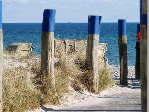Zugang zu Strand und Meer mit Holzpfählen und Dünengras