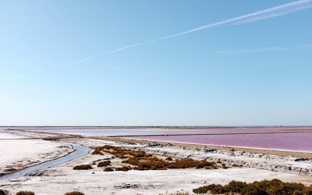 Salzsee mit der rot-violetten Veränderung durch Mikroben.