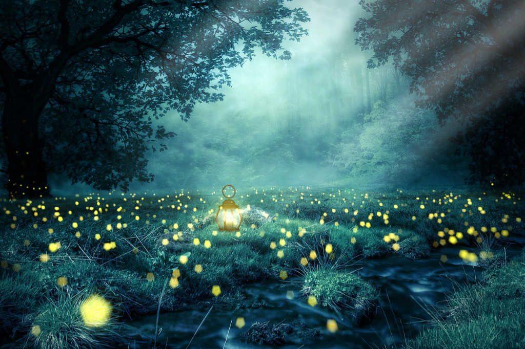 Glühwürmchen auf einer Waldlichtung mit Nebel. Illustration für Holla die Waldfee Tuch aus Noro Silk Garden Sock #370. Foto: Pixabay für Noromaniac