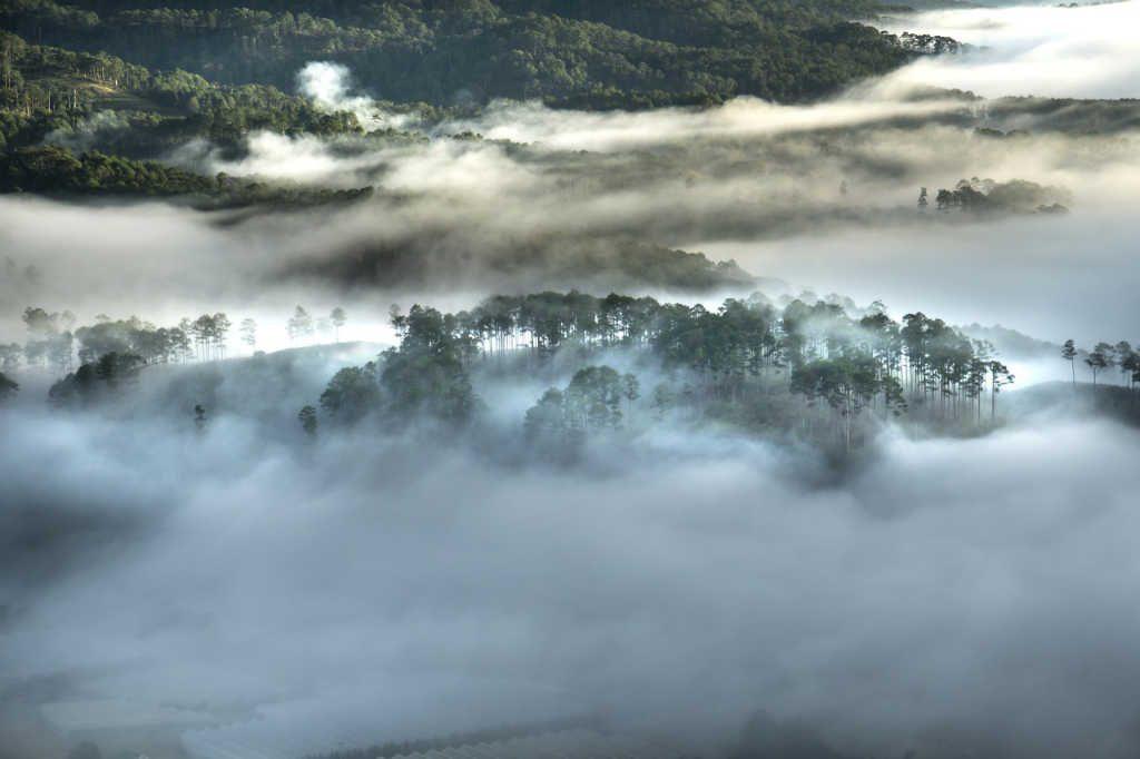 Nebel-Schwaden überm Wald als Illustration für Holla die Waldfee Tuch aus Noro Silk Garden Sock #370. Foto: Pixabay für Noromaniac