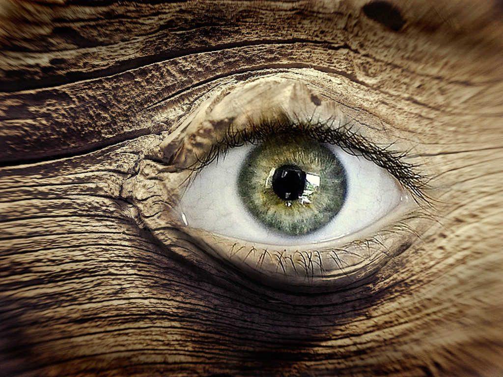 Auge im Baum. Die Waldfee sieht alles, was du der Natur antust. Illustration für Holla die Waldfee Tuch aus Noro Silk Garden Sock #370. Foto: Pixabay für Noromaniac