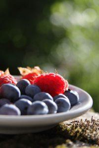 Frische Waldbeeren - Very Berry - auf einem Teller al sIllustration für den Farbrapport der Wolle im Artikel von Noromaniac