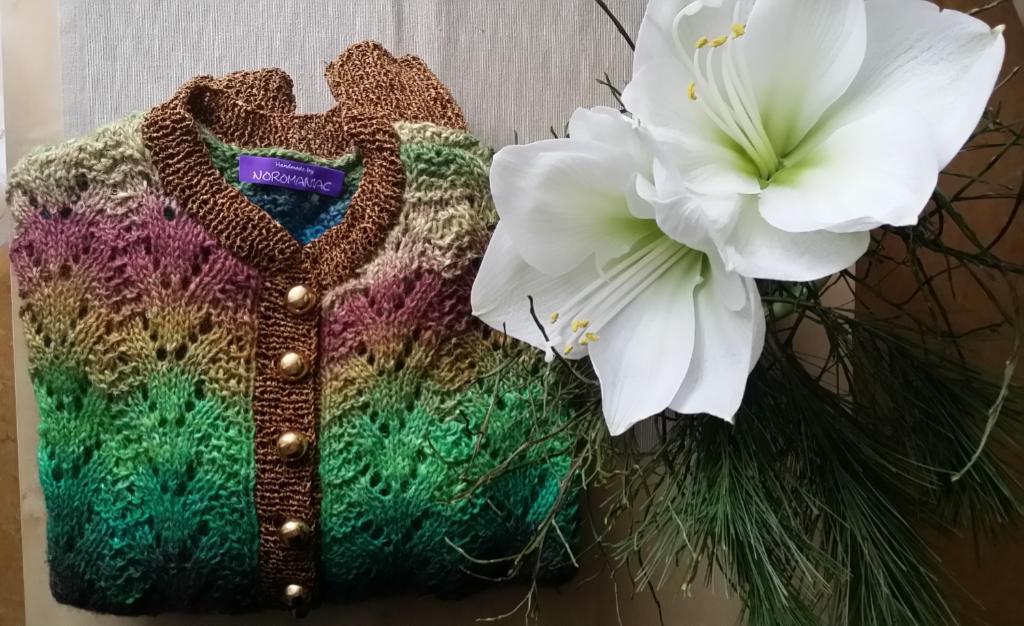Jacke gestrickt aus dem japanischen Garn Noro Silk Garden Lite 2082 von Noromaniac. Foto: Katrin Walter