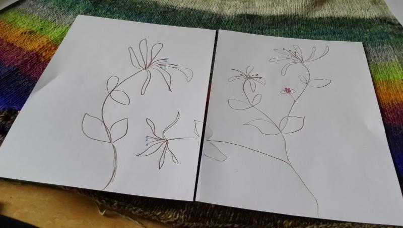 Zeichnung des Geißblatts Jelängerjelieber (Lonicera caprifolium) als Vorlage für das Sticken, Häkeln und Stricken der Applikationen. Foto, Idee und Design: Katrin Walter – Noromaniac