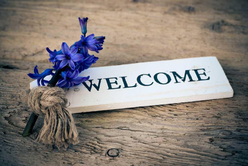 Welcome-Schild mit Hyazinthe steht für Welcome Spring + neues Norogarn in den Garnrezension bei Noromaniac