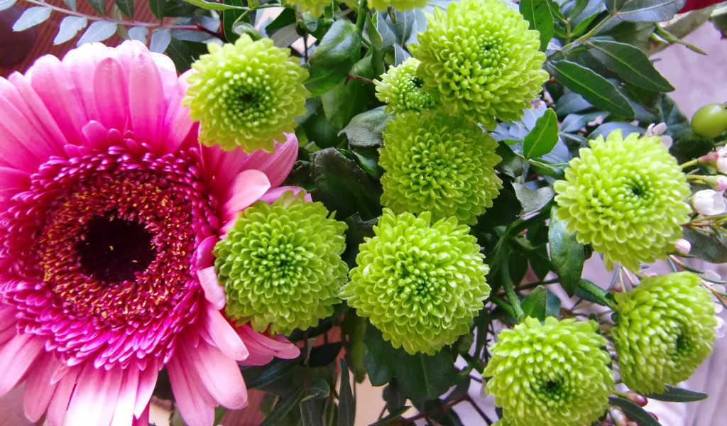 Bunter Blumenstrauß mit pink-farbener Gerbera als Dankeschön für das Klicken der Partner-Links von Noromaniac von der Seite Lost thread - Foto: Katrin Walter