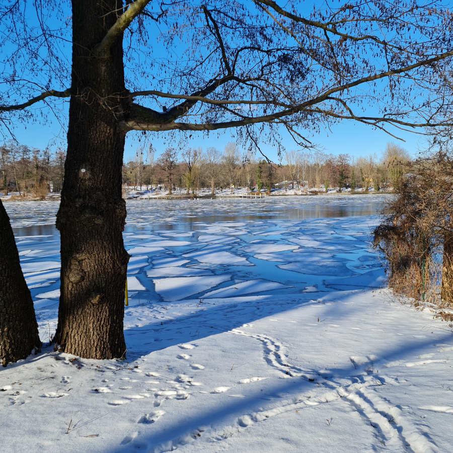 Solche wundervollen Landschaften zaubert der Winter. Der Schnee glitzert in der Sonne bei strahlend blauem Himmel. Foto: Katrin Walter alias Noromaniac
