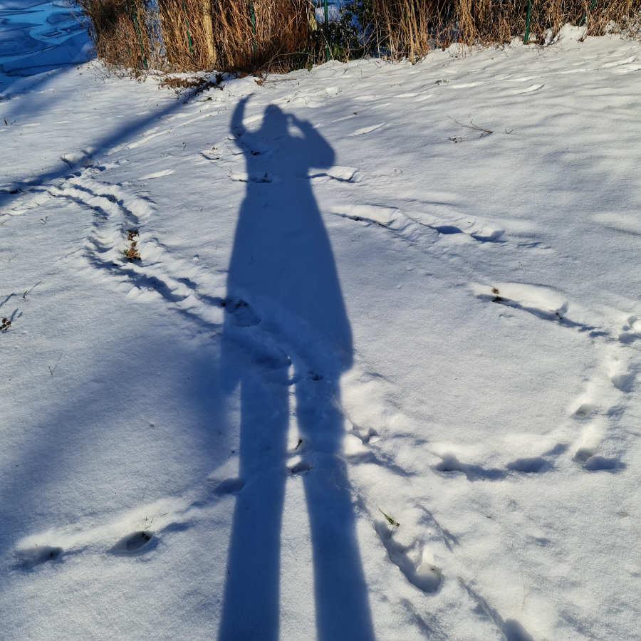 Hello von Noromanaic aus dem Winterwonderland. Foto: Katrin Walter